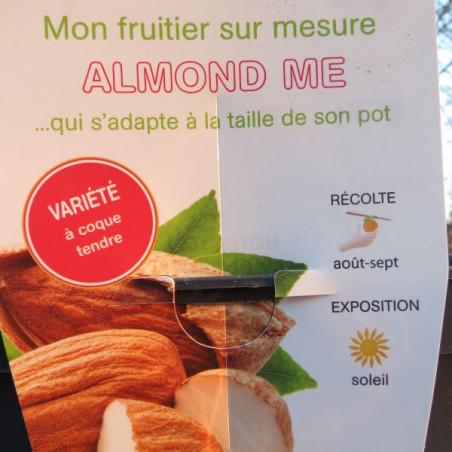 Amandier nain almond me®
