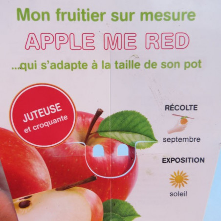 Pommier nain apple me red®