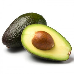 Online sale of avocado trees, Persea americana